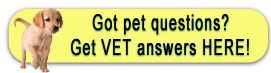 woof and meow vet inc. offers the VIN Client Information Library